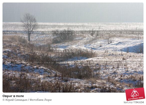 Овраг в поле, фото № 194634, снято 8 января 2008 г. (c) Юрий Синицын / Фотобанк Лори