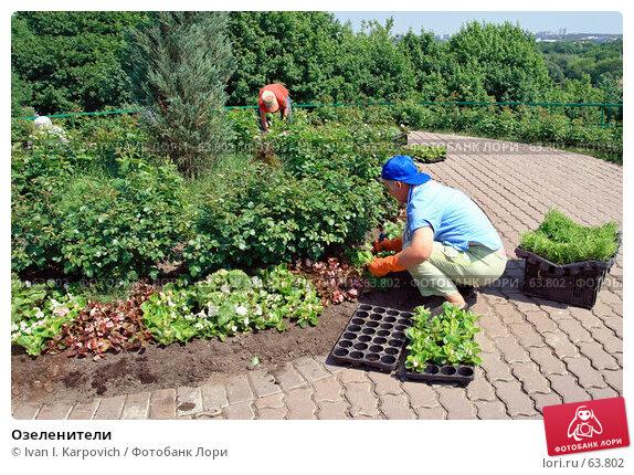 Озеленители, фото № 63802, снято 31 мая 2007 г. (c) Ivan I. Karpovich / Фотобанк Лори