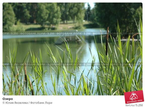 Купить «Озеро», фото № 5250, снято 6 июля 2006 г. (c) Юлия Яковлева / Фотобанк Лори