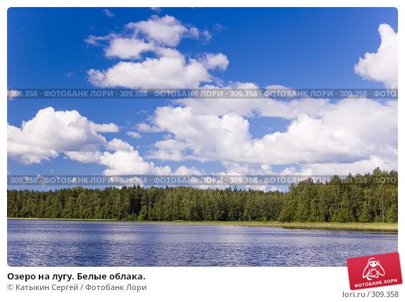 Озеро на лугу. Белые облака., фото № 309358, снято 21 июля 2007 г. (c) Катыкин Сергей / Фотобанк Лори