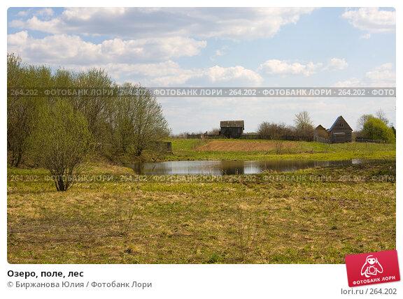 Озеро, поле, лес, фото № 264202, снято 27 апреля 2008 г. (c) Биржанова Юлия / Фотобанк Лори