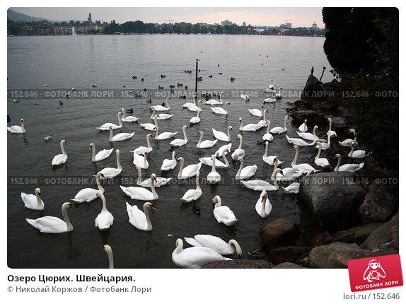 Озеро Цюрих. Швейцария., фото № 152646, снято 15 сентября 2006 г. (c) Николай Коржов / Фотобанк Лори