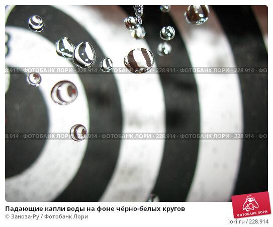 Падающие капли воды на фоне чёрно-белых кругов, фото № 228914, снято 1 марта 2008 г. (c) Заноза-Ру / Фотобанк Лори