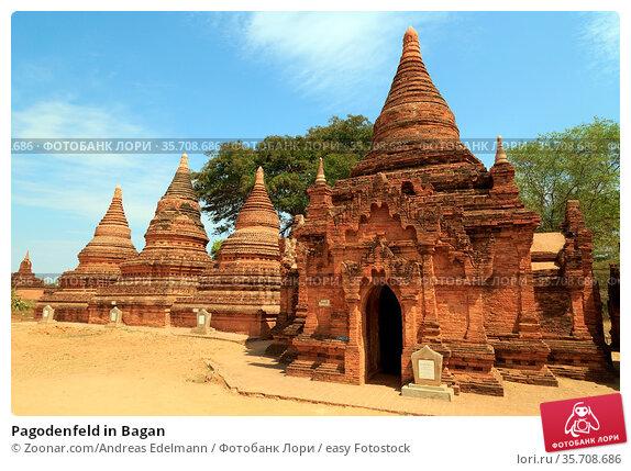 Pagodenfeld in Bagan. Стоковое фото, фотограф Zoonar.com/Andreas Edelmann / easy Fotostock / Фотобанк Лори
