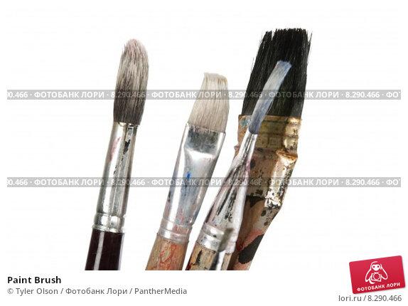 Купить «Paint Brush», фото № 8290466, снято 17 июля 2019 г. (c) PantherMedia / Фотобанк Лори