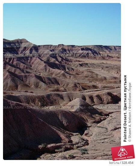 Painted Desert. Цветная пустыня, фото № 328454, снято 29 мая 2008 г. (c) Shawn A. Nelson / Фотобанк Лори