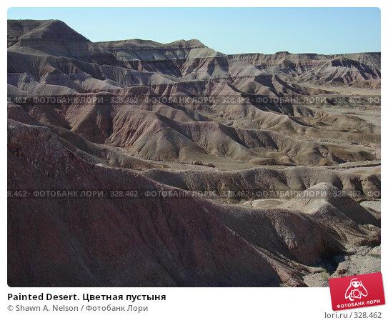 Painted Desert. Цветная пустыня, фото № 328462, снято 29 мая 2008 г. (c) Shawn A. Nelson / Фотобанк Лори