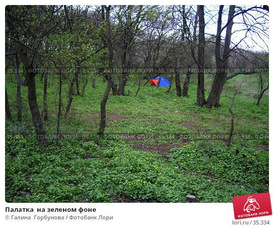 Палатка  на зеленом фоне, фото № 35334, снято 19 апреля 2006 г. (c) Галина  Горбунова / Фотобанк Лори