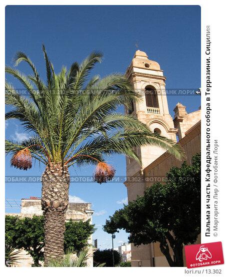 Пальма и часть Кафедрального собора в Терразини. Сицилия, фото № 13302, снято 4 ноября 2006 г. (c) Маргарита Лир / Фотобанк Лори
