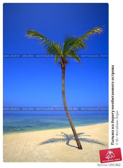 Пальма на берегу необитаемого острова, фото № 293982, снято 21 января 2017 г. (c) Михаил / Фотобанк Лори