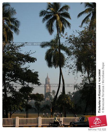 Купить «Пальмы и башня с часами», фото № 12122, снято 7 декабря 2004 г. (c) Вячеслав Потапов / Фотобанк Лори