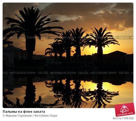 Пальмы на фоне заката, фото № 150522, снято 31 марта 2017 г. (c) Максим Горпенюк / Фотобанк Лори