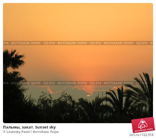 Пальмы, закат. Sunset sky, фото № 122914, снято 10 мая 2005 г. (c) Losevsky Pavel / Фотобанк Лори