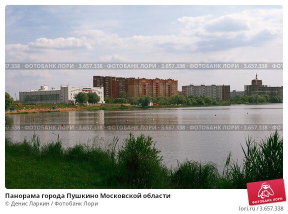 Купить «Панорама города Пушкино Московской области», фото № 3657338, снято 17 марта 2018 г. (c) Денис Ларкин / Фотобанк Лори
