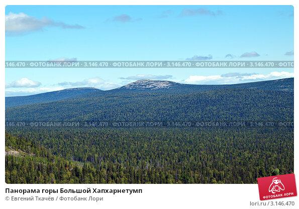 Купить «Панорама горы Большой Хапхарнетумп», фото № 3146470, снято 16 августа 2011 г. (c) Евгений Ткачёв / Фотобанк Лори