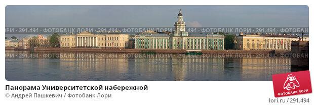Купить «Панорама Университетской набережной», фото № 291494, снято 23 ноября 2017 г. (c) Андрей Пашкевич / Фотобанк Лори