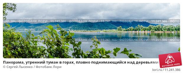 Купить «Панорама, утренний туман в горах, плавно поднимающийся над деревьями», фото № 11241386, снято 18 июля 2015 г. (c) Сергей Лысенко / Фотобанк Лори