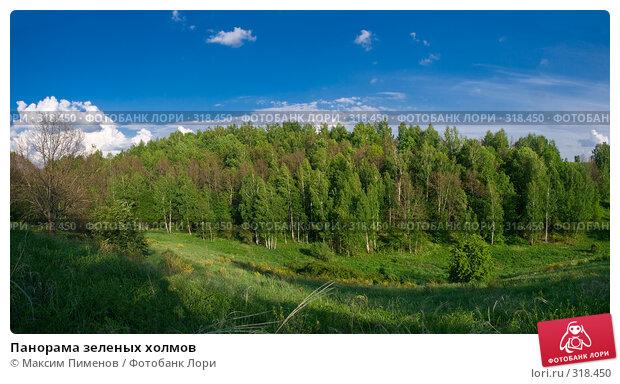 Панорама зеленых холмов, фото № 318450, снято 25 мая 2008 г. (c) Максим Пименов / Фотобанк Лори