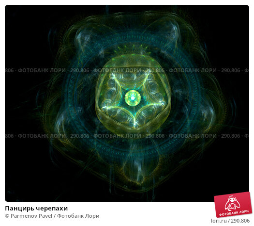 Панцирь черепахи, иллюстрация № 290806 (c) Parmenov Pavel / Фотобанк Лори