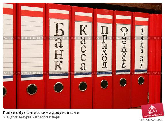 Надписи для папок в бухгалтерии электронная отчетность медок