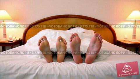 Купить «Пара спит под одеялом, высунув босые ноги из-под одеяла», видеоролик № 3775718, снято 12 марта 2012 г. (c) Losevsky Pavel / Фотобанк Лори