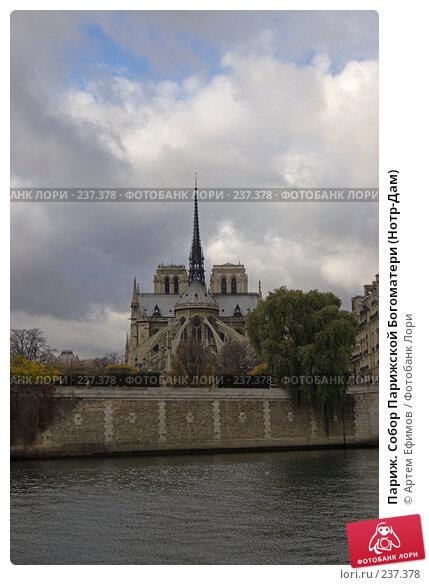 Париж. Собор Парижской Богоматери (Нотр-Дам), фото № 237378, снято 11 ноября 2007 г. (c) Артем Ефимов / Фотобанк Лори