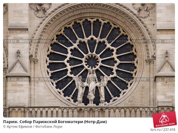 Париж. Собор Парижской Богоматери (Нотр-Дам), фото № 237418, снято 10 ноября 2007 г. (c) Артем Ефимов / Фотобанк Лори