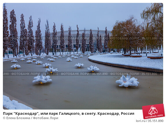 """Парк """"Краснодар"""", или парк Галицкого, в снегу. Краснодар, Россия. Редакционное фото, фотограф Елена Блохина / Фотобанк Лори"""