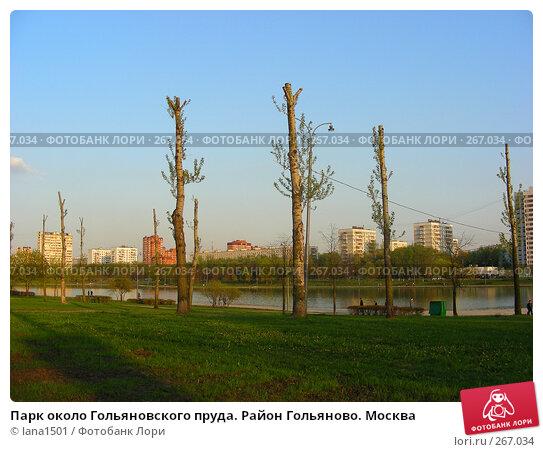 Парк около Гольяновского пруда. Район Гольяново. Москва, эксклюзивное фото № 267034, снято 28 апреля 2008 г. (c) lana1501 / Фотобанк Лори