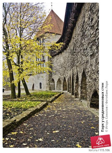 Парк у средневековых стен, фото № 115106, снято 16 января 2017 г. (c) Игорь Соколов / Фотобанк Лори
