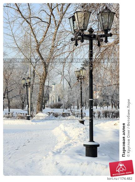 Парковая аллея, фото № 174482, снято 12 января 2008 г. (c) Круглов Олег / Фотобанк Лори