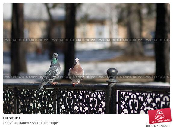 Купить «Парочка», фото № 258614, снято 26 марта 2008 г. (c) Рыбин Павел / Фотобанк Лори