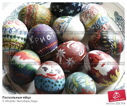 Купить «Пасхальные яйца», фото № 233714, снято 11 апреля 2004 г. (c) VPutnik / Фотобанк Лори