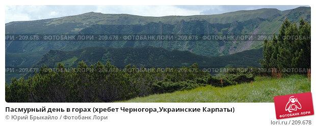 Купить «Пасмурный день в горах (хребет Черногора,Украинские Карпаты)», фото № 209678, снято 23 марта 2018 г. (c) Юрий Брыкайло / Фотобанк Лори