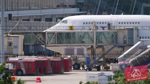 Passengers boarding Thai Airways Boeing 747 (2019 год). Редакционное видео, видеограф Игорь Жоров / Фотобанк Лори