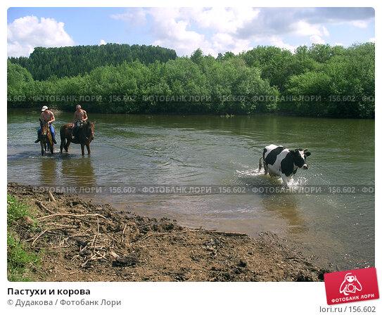 Пастухи и корова, эксклюзивное фото № 156602, снято 17 июня 2005 г. (c) Дудакова / Фотобанк Лори