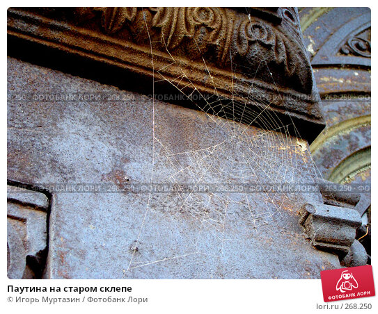 Паутина на старом склепе, фото № 268250, снято 13 апреля 2008 г. (c) Игорь Муртазин / Фотобанк Лори