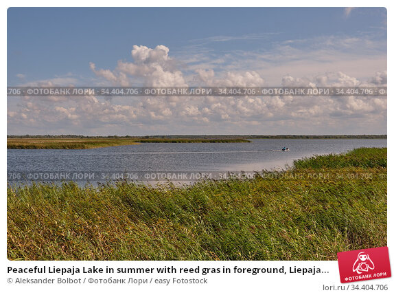 Peaceful Liepaja Lake in summer with reed gras in foreground, Liepaja... Стоковое фото, фотограф Aleksander Bolbot / easy Fotostock / Фотобанк Лори