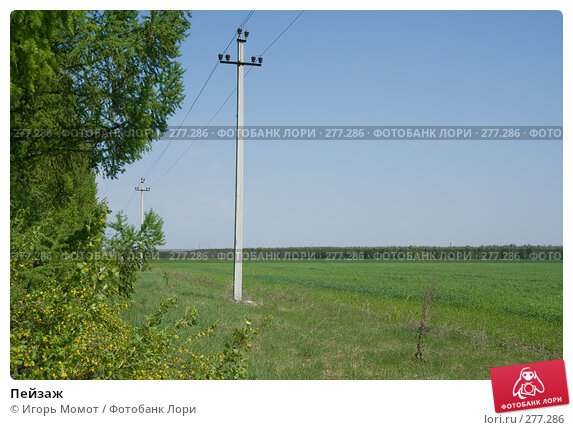 Купить «Пейзаж», фото № 277286, снято 7 мая 2008 г. (c) Игорь Момот / Фотобанк Лори