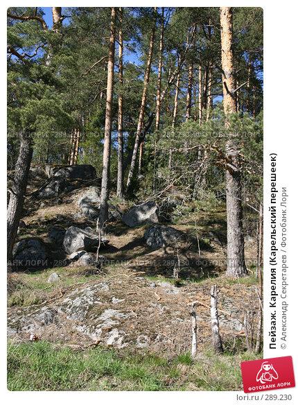 Пейзаж. Карелия (Карельский перешеек), фото № 289230, снято 17 мая 2007 г. (c) Александр Секретарев / Фотобанк Лори
