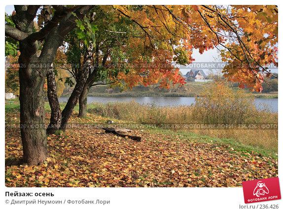 Пейзаж: осень, эксклюзивное фото № 236426, снято 7 октября 2006 г. (c) Дмитрий Неумоин / Фотобанк Лори