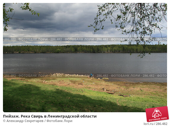Пейзаж. Река Свирь в Ленинградской области, фото № 286482, снято 13 мая 2008 г. (c) Александр Секретарев / Фотобанк Лори