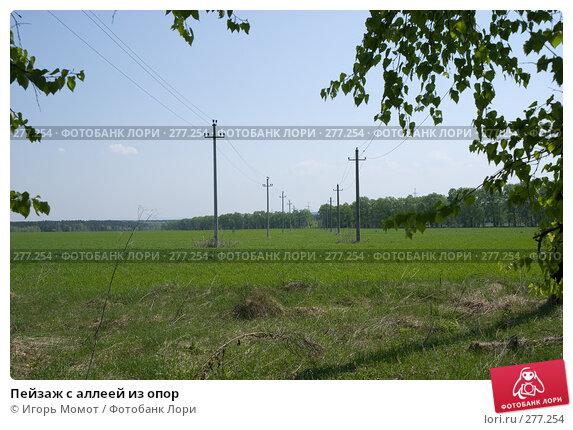 Пейзаж с аллеей из опор, фото № 277254, снято 7 мая 2008 г. (c) Игорь Момот / Фотобанк Лори