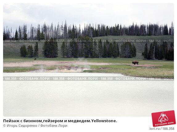 Пейзаж с бизоном,гейзером и медведем.Yellowstone., фото № 188358, снято 17 мая 2007 г. (c) Игорь Сидоренко / Фотобанк Лори