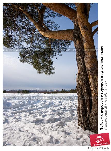 Пейзаж с деревом и городом на дальнем плане, фото № 224486, снято 15 марта 2008 г. (c) Шахов Андрей / Фотобанк Лори
