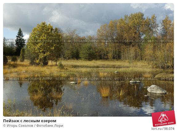 Купить «Пейзаж с лесным озером», фото № 98074, снято 21 апреля 2018 г. (c) Игорь Соколов / Фотобанк Лори