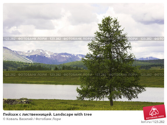 Пейзаж с лиственницей. Landscape with tree, фото № 123282, снято 30 марта 2017 г. (c) Коваль Василий / Фотобанк Лори