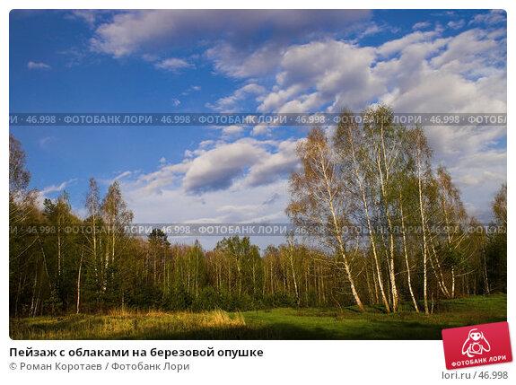 Пейзаж с облаками на березовой опушке, фото № 46998, снято 12 мая 2007 г. (c) Роман Коротаев / Фотобанк Лори