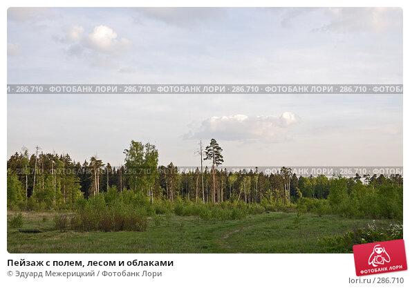 Пейзаж с полем, лесом и облаками, фото № 286710, снято 12 мая 2008 г. (c) Эдуард Межерицкий / Фотобанк Лори