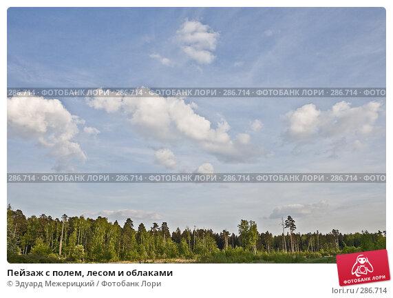 Пейзаж с полем, лесом и облаками, фото № 286714, снято 12 мая 2008 г. (c) Эдуард Межерицкий / Фотобанк Лори